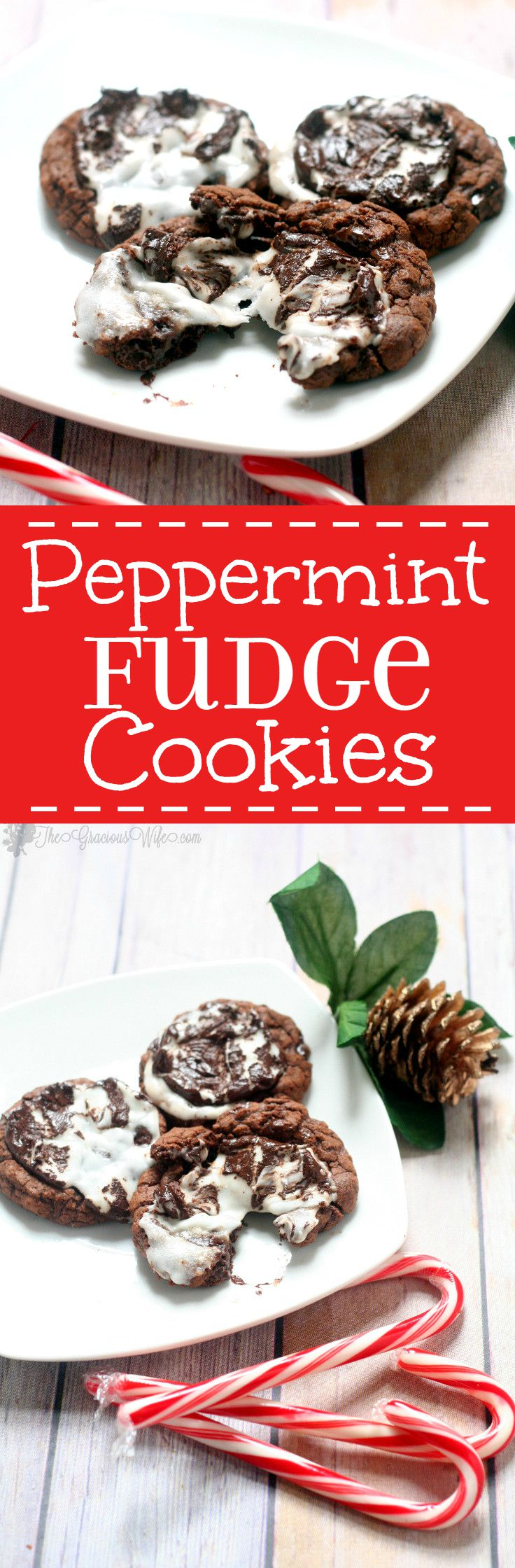 Peppermint Fudge Cookies are a chocolate fudge dream, topped with a ...