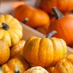 9 Uses for Mini Pumpkins