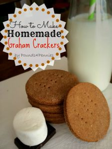 Toddler Snack Ideas-OVER 30 Snack Ideas for Kids! These easy and healthy snacks are fun and great for after school or on the go!