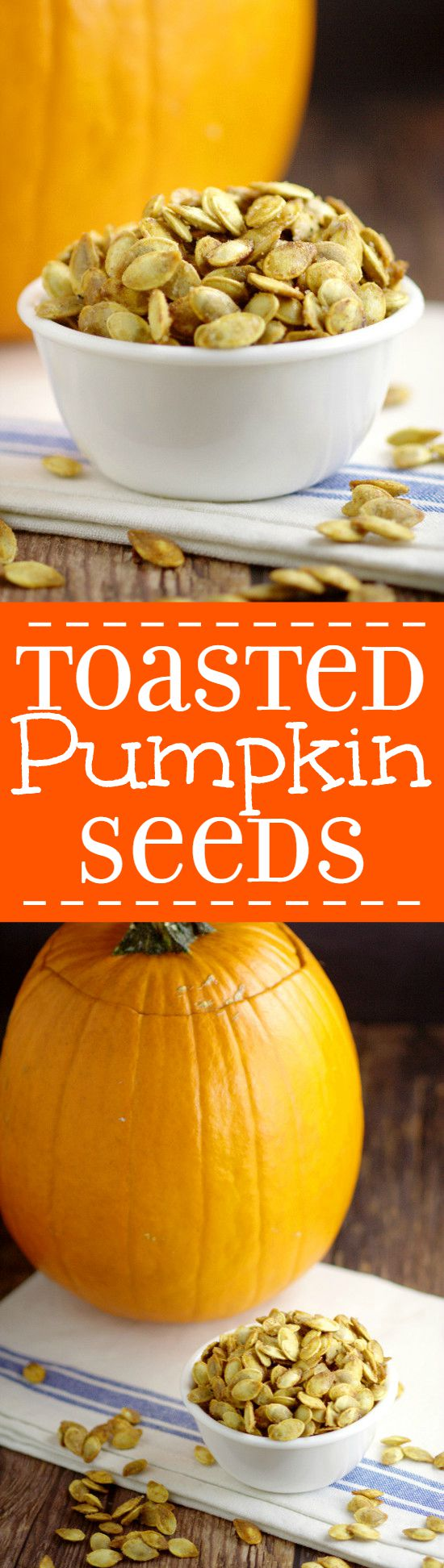Don't throw out your pumpkin seeds! Toasted Pumpkin Seeds are a delicious and easy snack. You can make this buttery, salty goodness right in your oven! Perfect savory treat for Halloween!
