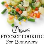 Easy Freezer Cooking for Beginners