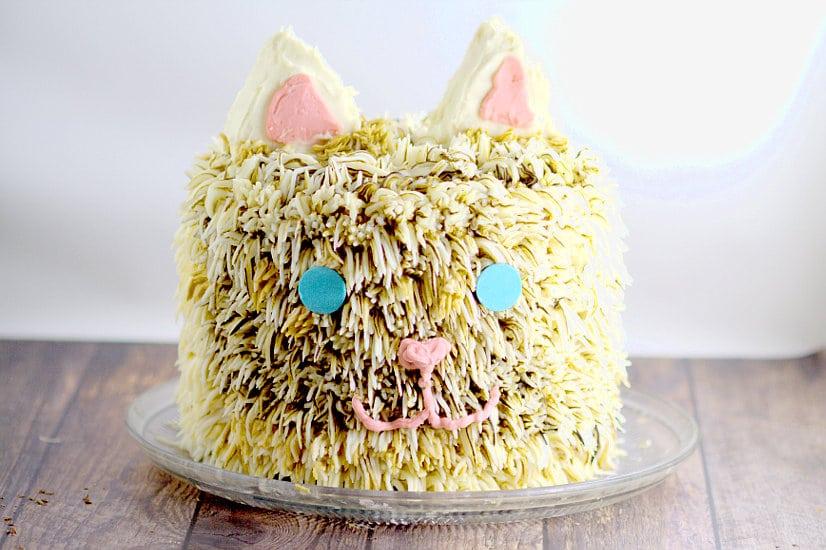 Kitty Cat Birthday Cake The Gracious Wife