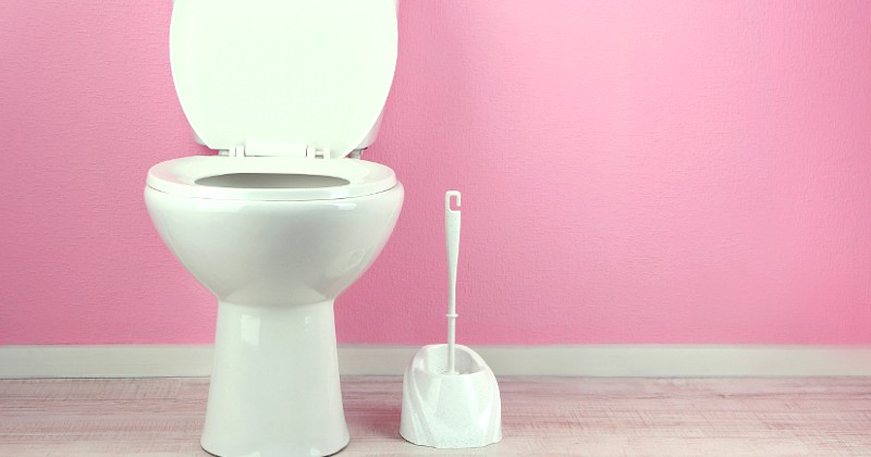 Tips to Help You Clean Your Bathroom Faster -Cleaning the bathroom is probably the most dreaded household chore. But it needs to be done, not just to keep your bathrooms looking nice, but to keep them safe and germ free. However, just because it needs to be done doesn't mean it has to take forever! Take a look at these 5 Tips to Help You Clean Your Bathroom Faster! Yes, please! Anything to make cleaning the bathroom easier!