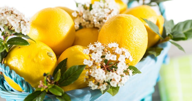 Household Uses for Lemons -Lemons are an extremely versatile tool to have around the house. Check out these Household Uses for Lemons from cleaning and freshening to personal care. Such a great natural way to clean. Love these tips!
