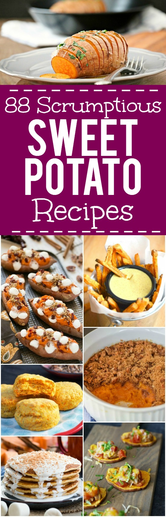 Sweet Potato Recipes - Side Dishes, dinners, breakfast, and dessert. 88 of the BEST Sweet Potato Recipes for warm, cozy dinners, unique breakfasts and desserts, and delicious and festive Thanksgiving side dishes.
