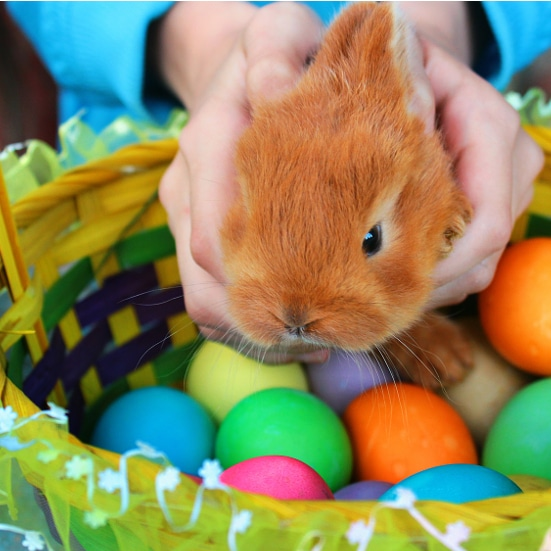 112 Non-Edible Easter Basket Fillers