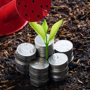 6 Tips to Save Money on Gardening Supplies