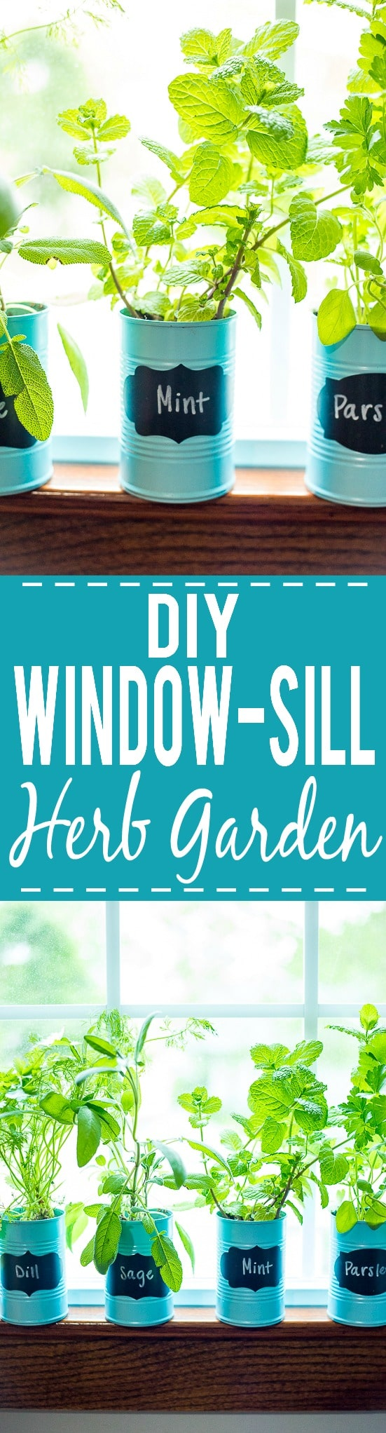 How to Make a DIY Indoor Window Sill Herb Garden - Save money, prevent food waste, and bring a little green inside with this easy and cheap DIY Indoor Window Sill Herb Garden for fresh herbs all year long!