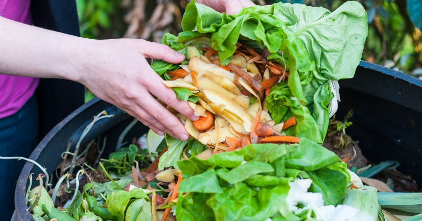 Composting Basics -Composting is great for your garden, the environment, and even your wallet (all that money saved on fertilizer!), so if you want to get started with your own compost, here are some composting basics tips for how to compost. Gardening tips