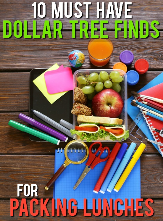 10 Dollar Tree Items Perfect for Packing Lunches -Make lunch packing quick, easy, and most of all cheap, with these 10 Dollar Tree Items Perfect for Packing in Lunches for a fun and yummy school lunch for kids! Cheap back to school lunch ideas