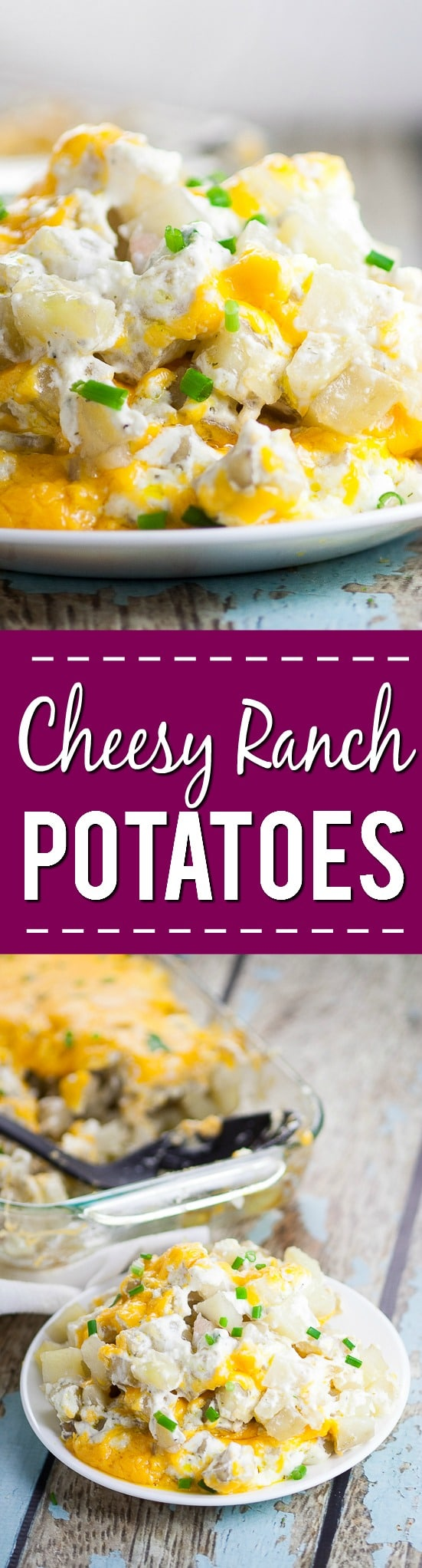 Cheesy Ranch Potatoes Recipe -Creamy, Cheesy Ranch Potatoes are the ultimate comfort food recipe that everyone will love. Perfect for potlucks, holidays, and a crowd favorite dish to pass. Soft, warm potatoes covered in creamy ranch and cream cheese and topped with gooey melted cheddar. Easy potato side dish recipe.