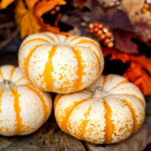 8 Frugal Ways to Decorate for Fall -Fall decor can be so fun, cozy, and comfy for the home. Make your home look, smell, and feel like Fall on a budget with these 8 Frugal Ways to Decorate Your Home for Fall! Fall leaves, pumpkins,... Not going to lie. Decorating for Fall is MY FAVORITE!