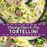 Make this quick and easy Creamy Ham and Pea Tortellini in one pot in just 30 minutes with salty ham, sweet peas, and gooey cheese for a perfect easy weeknight pasta dish the whole family will love!